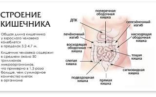 Что делать при боли в кишечнике