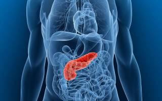 Сок панкреатический: описание, состав, функции и особенности
