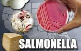 Чем опасен сальмонеллез для человека