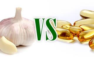 Чеснок: польза и вред, лечение и противопоказания, как убрать запах изо рта