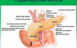 Симптомы болезней поджелудочной железы у женщин и мужчин