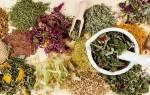Травы от аденомы простатита самые эффективные