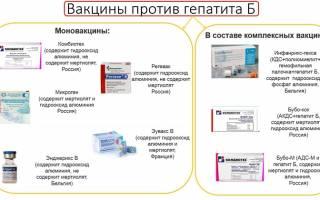 Прививка от гепатита Б взрослым – схема вакцинации, побочные эффекты. Вирусный гепатит Б – профилактика. Как можно заразиться гепатитом Б?