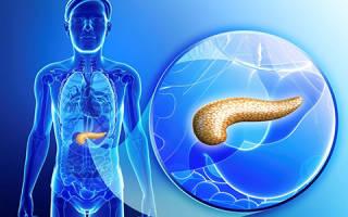 Поджелудочная железа с участками фиброза