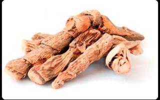 Аир болотный лечебные свойства для мужчин