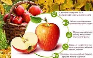 Запеченные яблоки от запора