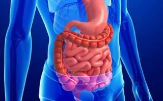 Как наладить работу желудочно кишечного тракта