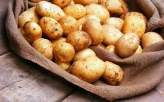 Картофель при геморрое: свойства, способ применения (свечи, клизмы, компресс, сок, ванночки), противопоказания, лечение при беременности, отзывы
